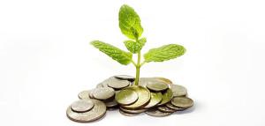 Consumo consciente bom para o meio ambiente e seu bolso